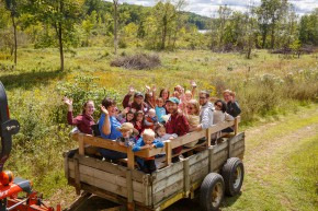 wagon ride with a beautiful view of natural environment